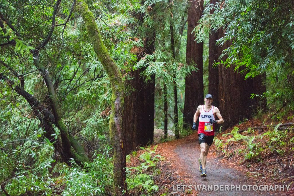 The author tackles the redwoods, Woodside Ramble, December 2015
